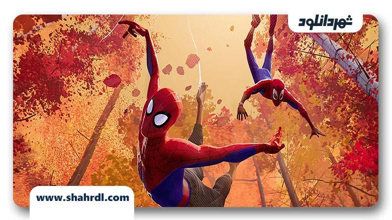 انیمیشن Spider-Man: Into the Spider-Verse 2018