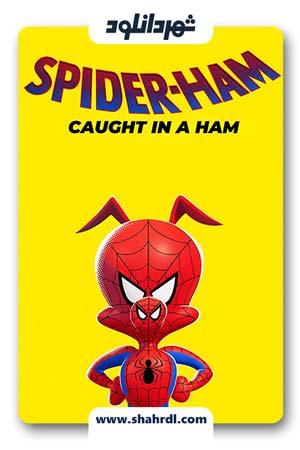 دانلود انیمیشن Spider-Ham Caught in a Ham 2019 | دانلود انیمیشن خوک عنکبوتی