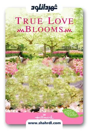 دانلود فیلم True Love Blooms 2019 | دانلود فیلم شکوفه واقعی عشق